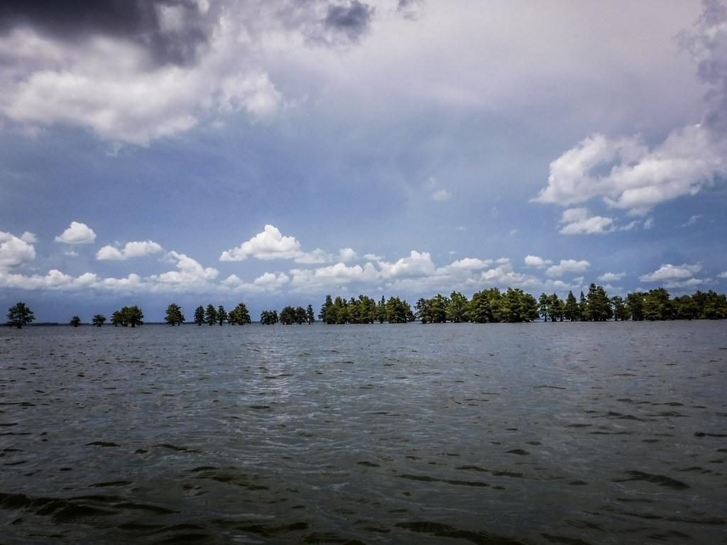 Lake Marion - Ferguson-217
