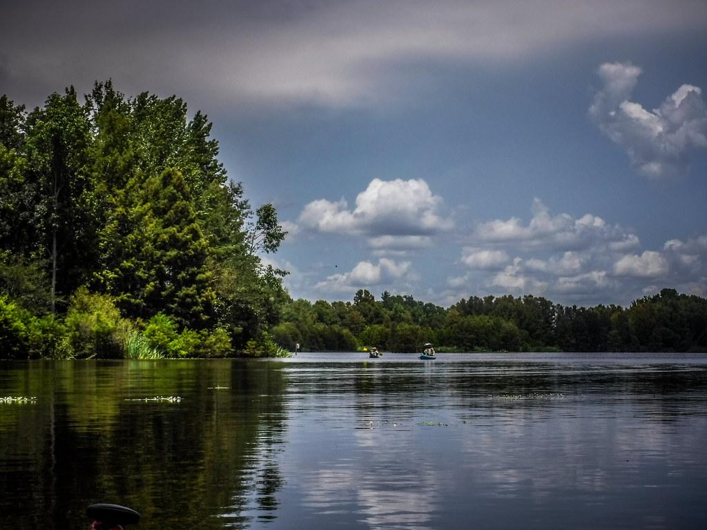 Lake Marion - Ferguson-180