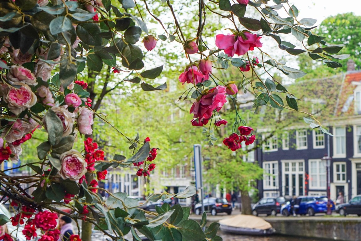 Päivä Amsterdamissa