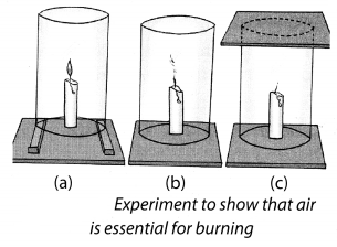 Combustion and Flame Class 8 Science NCERT Textbook Questions A2