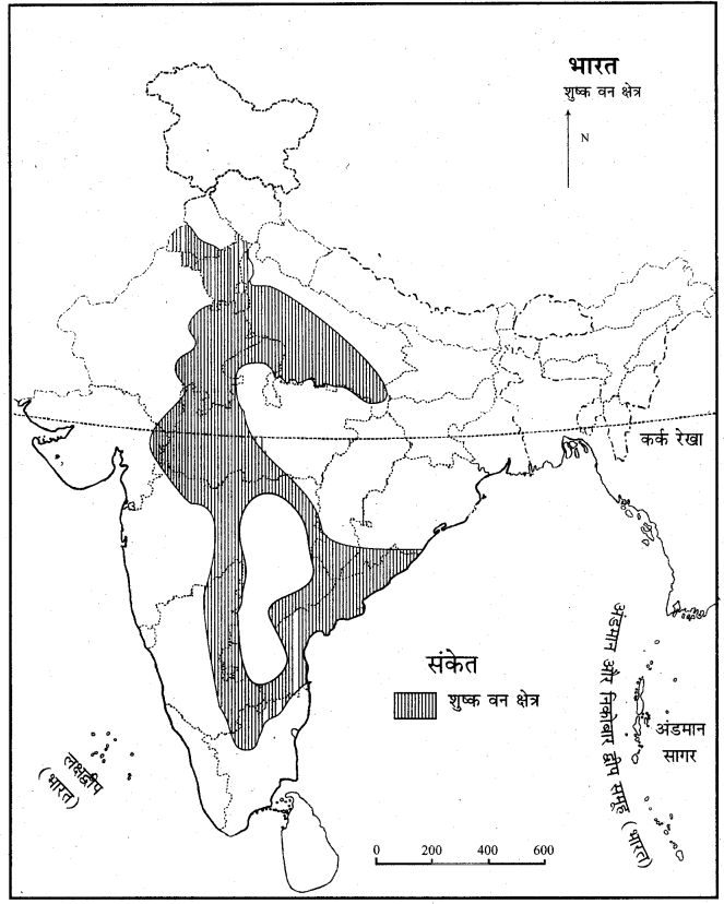 RBSE Solutions for Class 11 Indian Geography Chapter 8 भारत की प्राकृतिक वनस्पति 4