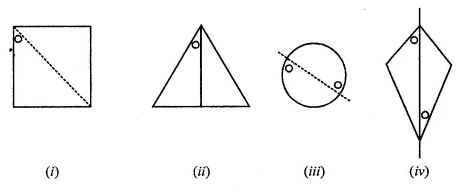 ML Aggarwal Class 7 Solutions for ICSE Maths Chapter 14 Symmetry Ex 14.1 Q3