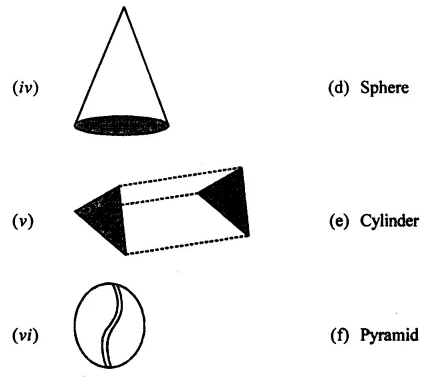 ML Aggarwal Class 7 Solutions for ICSE Maths Chapter 15 Visualising Solid Shapes Ex 15.1 Q1.1
