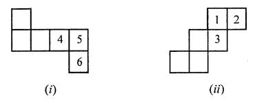 ML Aggarwal Class 7 Solutions for ICSE Maths Chapter 15 Visualising Solid Shapes Ex 15.1 Q3.1