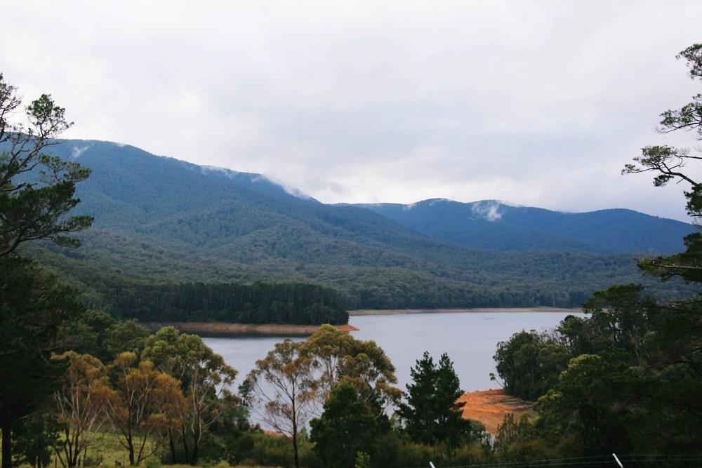 26 June 2016: Selover's Lookout   Healesville, Victoria