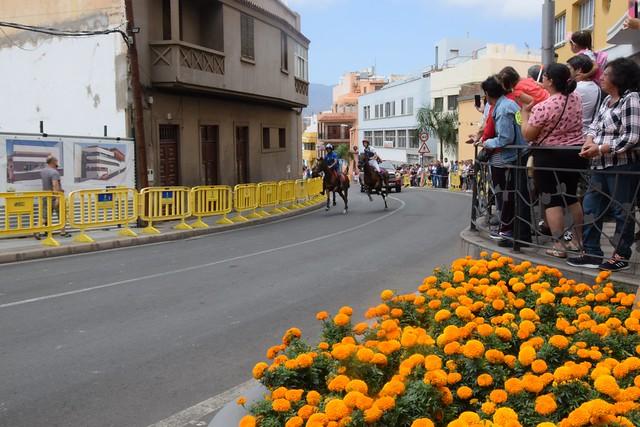 Cerca de 3.000 personas disfrutarón en Gáldar de la Carrera de Caballos en honor a Santiago