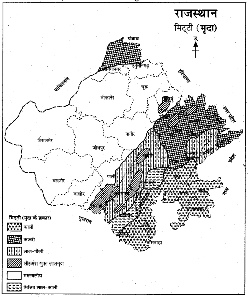 RBSE Solutions for Class 11 Indian Geography Chapter 13 राजस्थान जलवायु, वनस्पति व मृदा 9