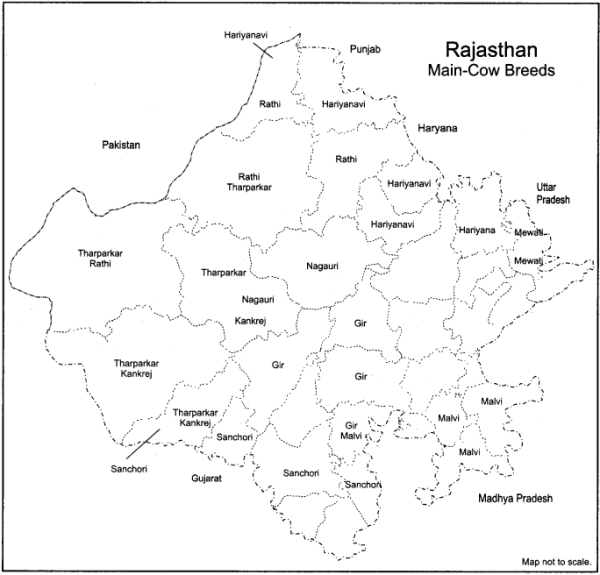 RBSE Solutions for Class 12 Geography Chapter 24 Rajasthan Minerals and Industries 2