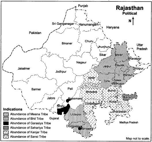 RBSE Solutions for Class 12 Geography Chapter 25 Rajasthan Population and Tribes 10