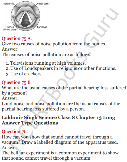 Lakhmir Singh Science Class 8 Solutions Chapter 13 Sound - 25