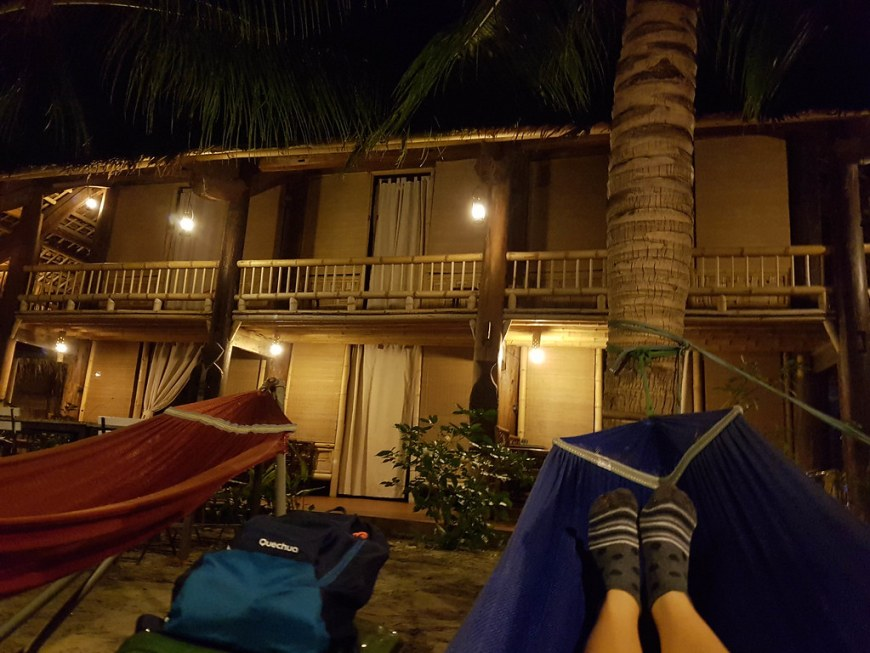 The outside of the eco lodge, with a palm tree in front and two hammocks in front