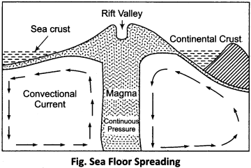 RBSE Solutions for Class 11 Physical Geography Chapter 5 Origin of Continents and Oceans 4