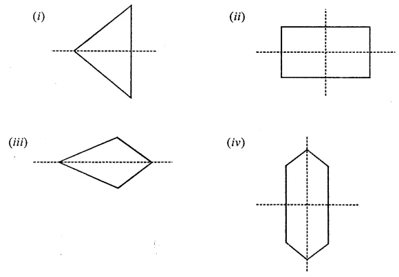 ML Aggarwal Maths Book Class 6 Chapter 12 Symmetry Check Your Progress