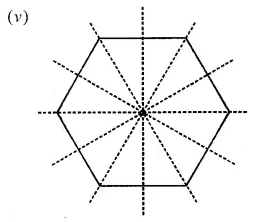 ICSE Class 6 Maths ML Aggarwal Chapter 12 Symmetry Check Your Progress