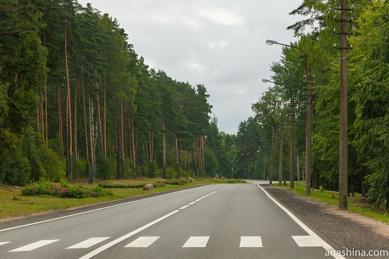 Приморское шоссе в Зеленогорске