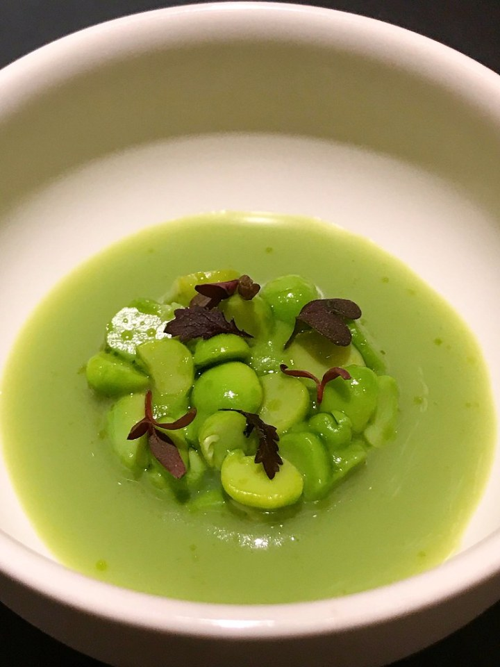 Amuse Bouche: Italian Green pea with green pea purée and broth with geranium