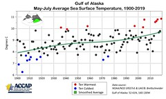 Gulf of Alaska sea surface temperature long term trend for early summer