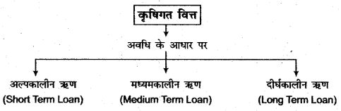 RBSE Solutions for Class 11 Economics Chapter 17 कृषिगत विकास 1