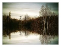 .. pond
