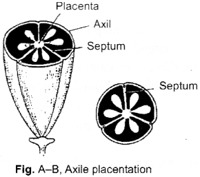 ISC Class 12 Biology Previous Year Question Papers Solved 2015 3