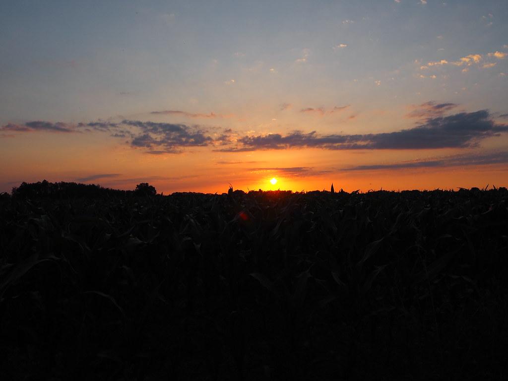Fucking Idylle - Sonnenuntergang