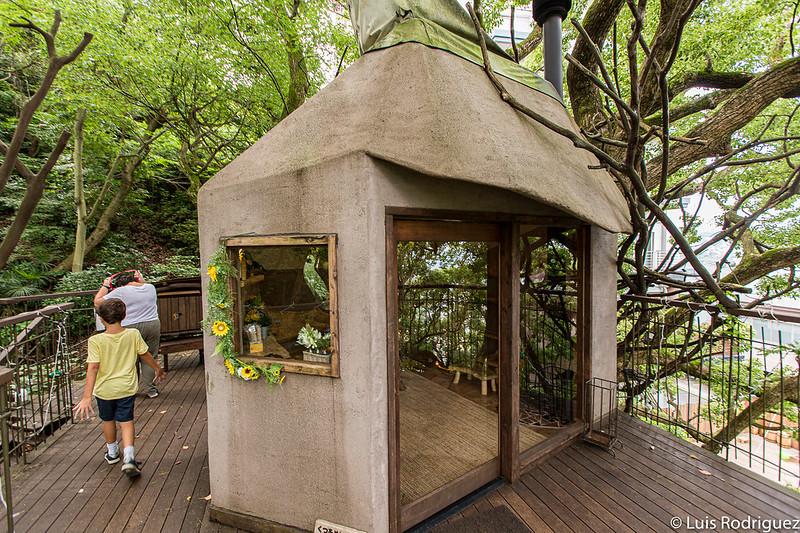 Cabaña en el árbol de Risonare Atami