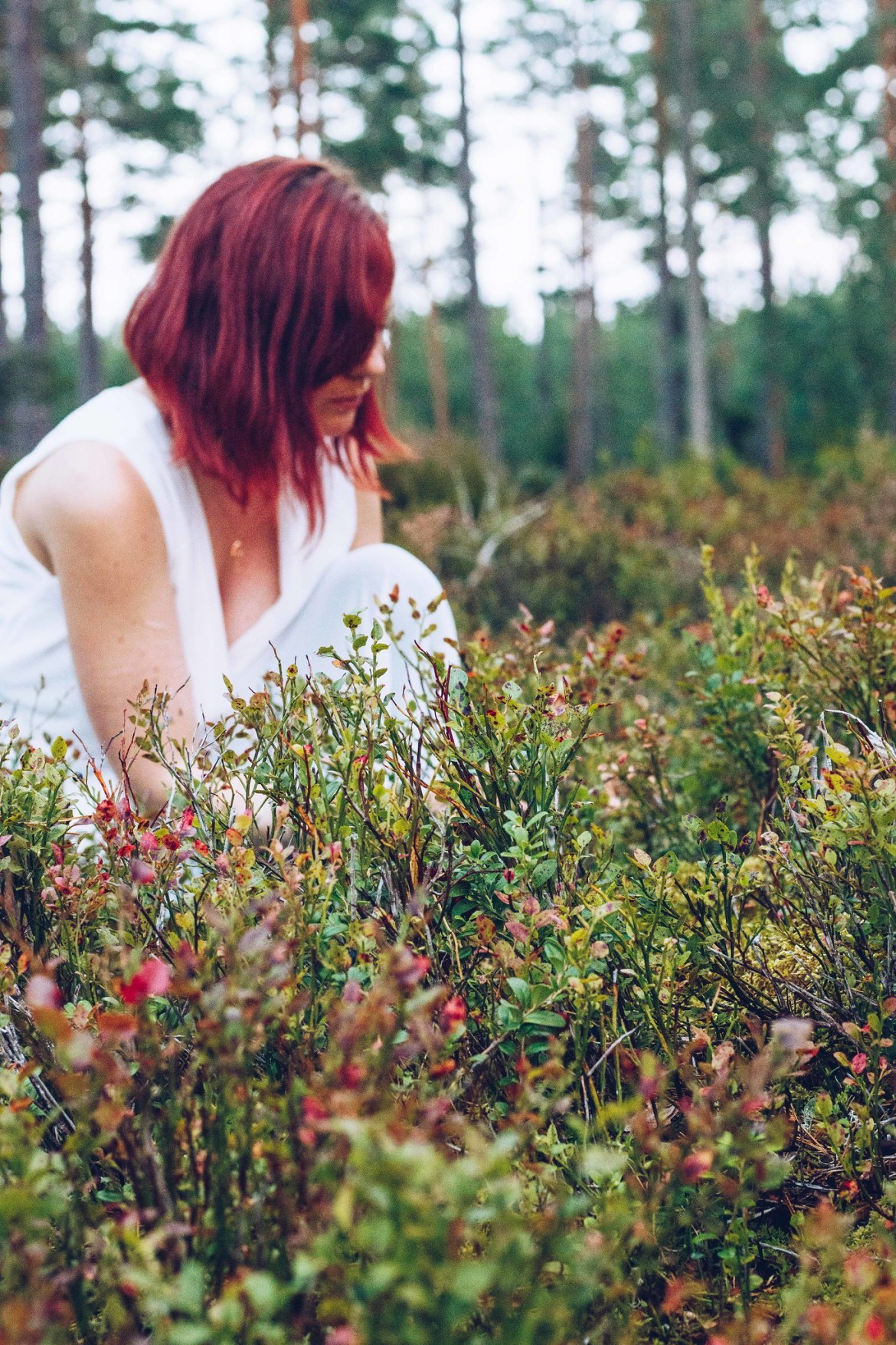 Skogsporträtt - reaktionista.se