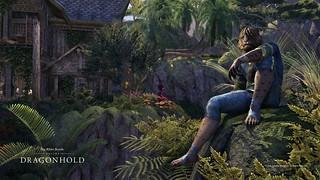 Dragonhold_BlackHeights_Relaxation