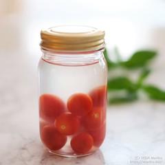プチトマト酵母 20190702-DSCT7762 (2)