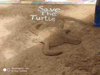 Save_turtle_programme