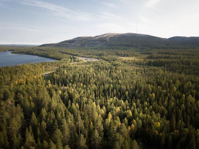 Auroraiglu_pyhänasteli (9)