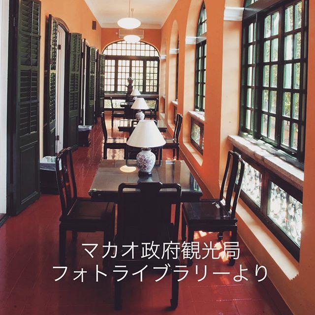 11月に予定しているマカオ旅行。 今回はマカオに泊まる予定にしてて。 世界遺産巡りしてくるのぉ!!! (ロバート・ホー・トン図書館の写真をお借りしました) #レッツゴーマカオ #海外旅行 #マカオに行きたい