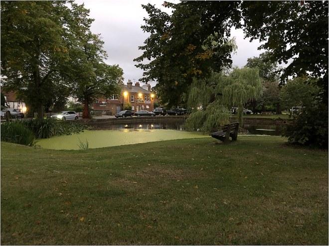 Godstone Pond 12 Sep