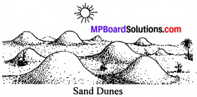 MP Board Class 8th Social Science Solutions Chapter 7 Changing Outer Forces-5