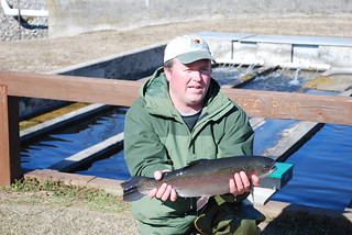 Photo of  man holding a rainbow trout.