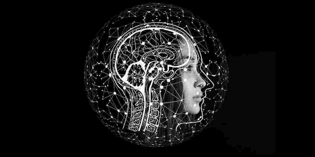 cellule-neurales-transplantation