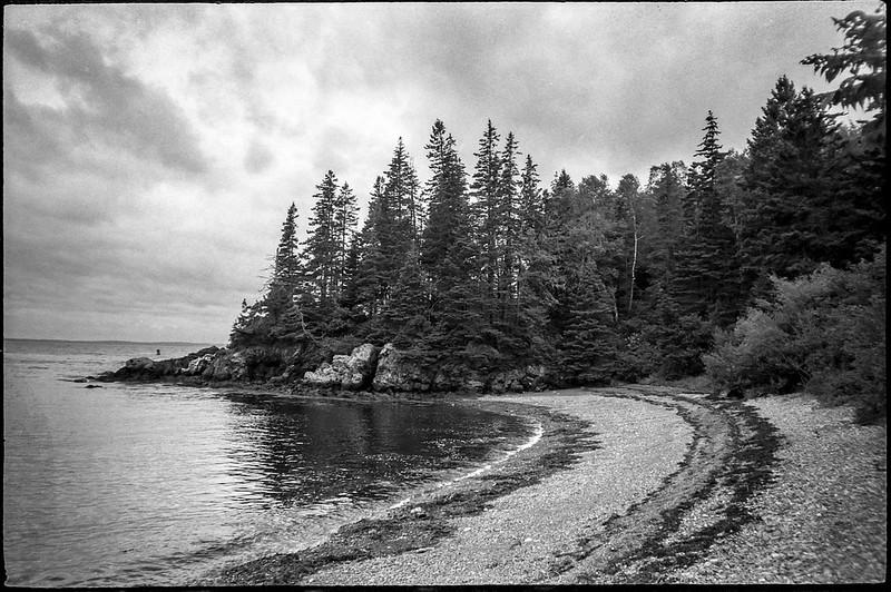 pebble beach, curvilinear shoreline, spruce trees, stormy sky, Owl's Head State Park, Owl's Head, Maine, Nikon SmileTaker (RF 10), Derev Pan 400, HC-110 developer, 9.7.19