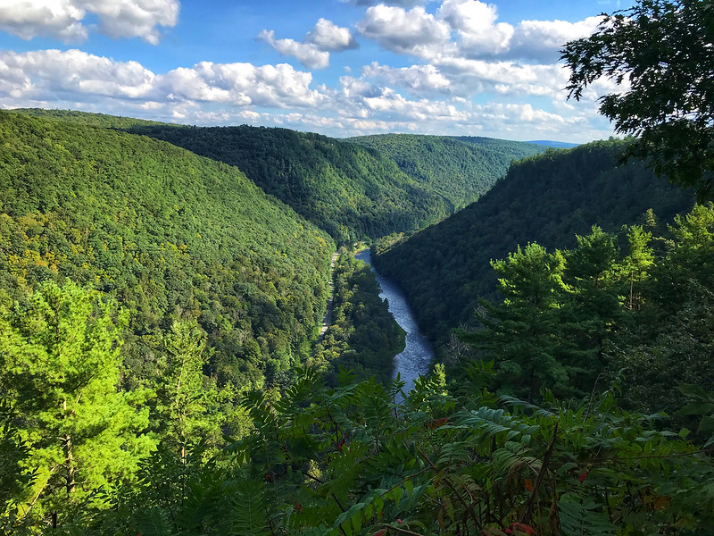 Pine Creek Gorge from Colton Point State Park