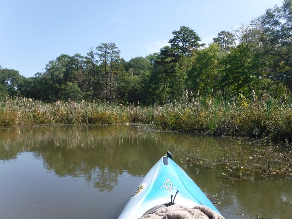 Berry Shoals Pond-58