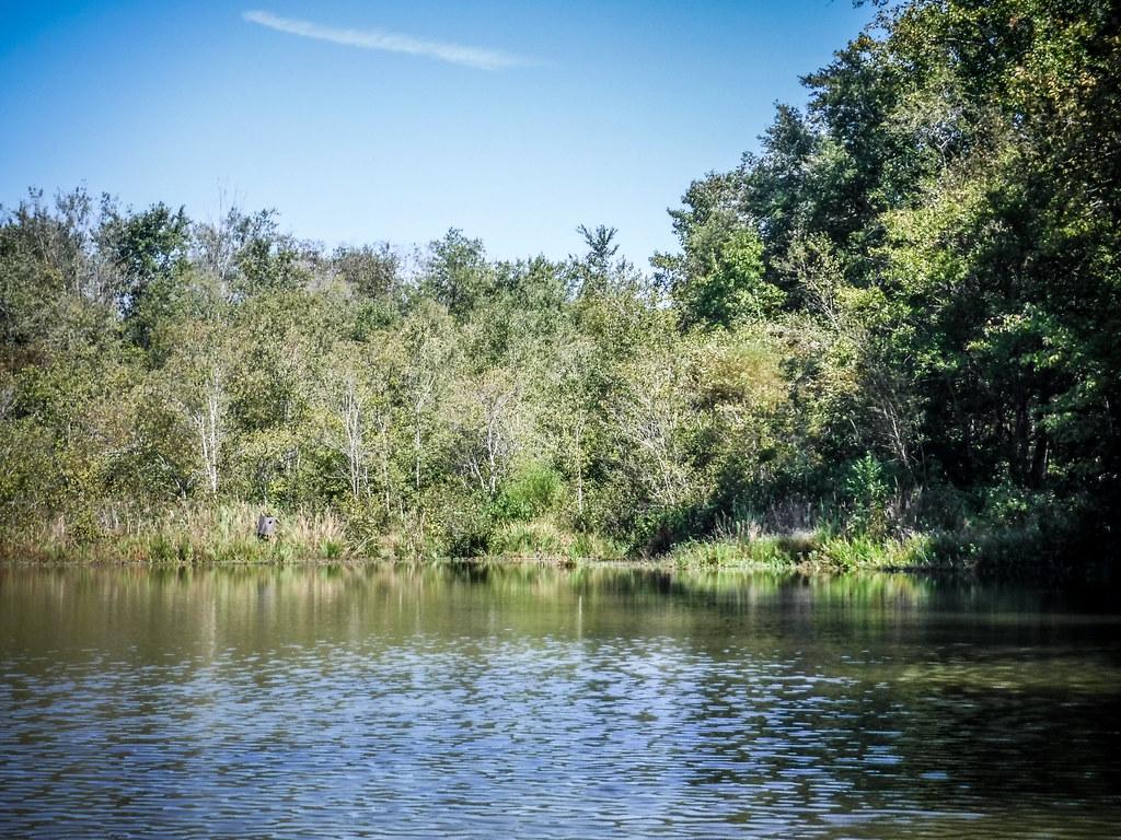 Berry Shoals Pond-47