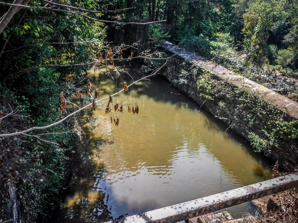Berry Shoals Pond-39