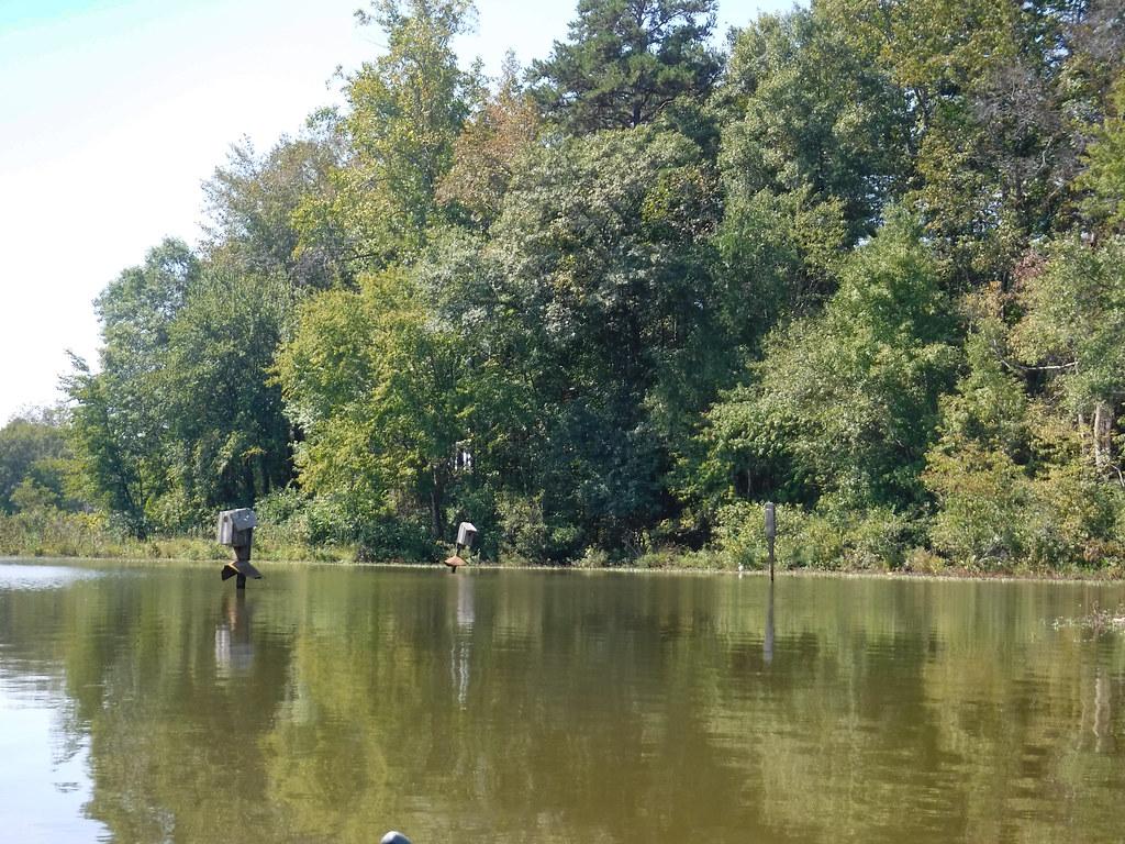 Berry Shoals Pond-51