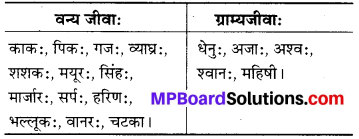 MP Board Class 6th Sanskrit Solutions Chapter 14 जन्तुशाला 3