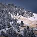 First snowfall Bozeman, Montana