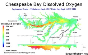 Map of Chesapeake Bay dissolved oxygen results from September 2019
