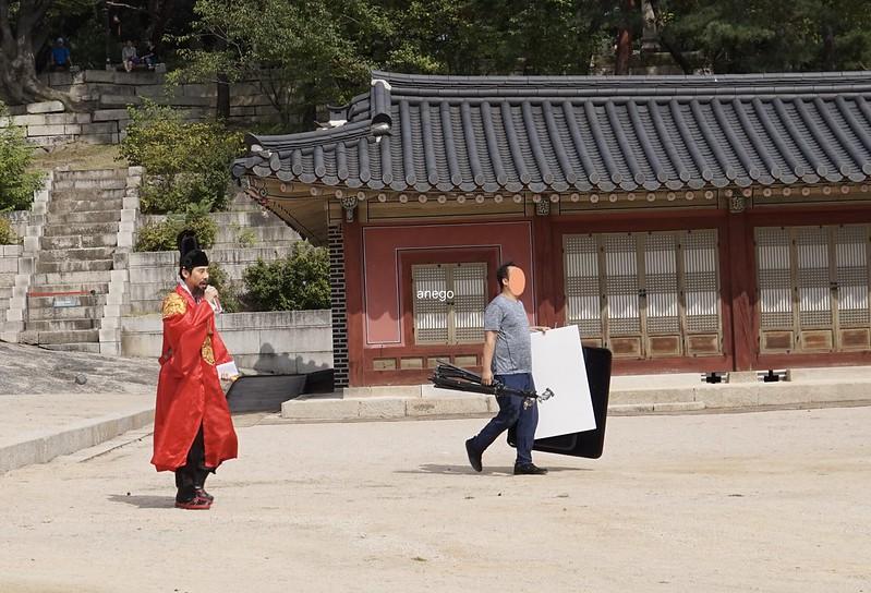 昌慶宮 撮影
