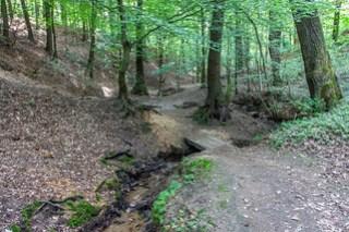 Dreizehn-Brücken-Weg