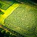 2019 Kilchis River Corn Maze
