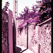 Alley (Lomochrome Purple)