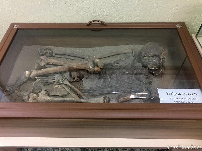 Костяк из Чатал-Хююка. Археологический музей г.Конья